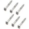 Strat Style Tremolo Mounting Screws (6) Chrome