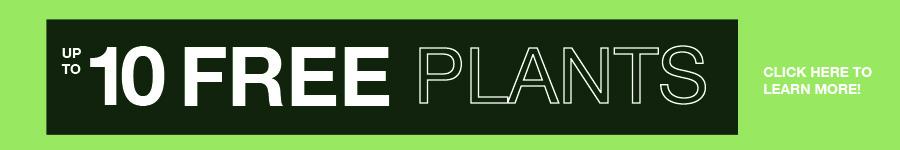 10-free-plants.jpg