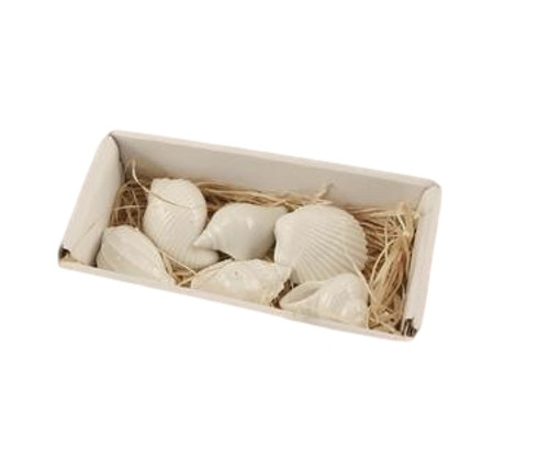 Shells Ceramic  Nautical Seasons