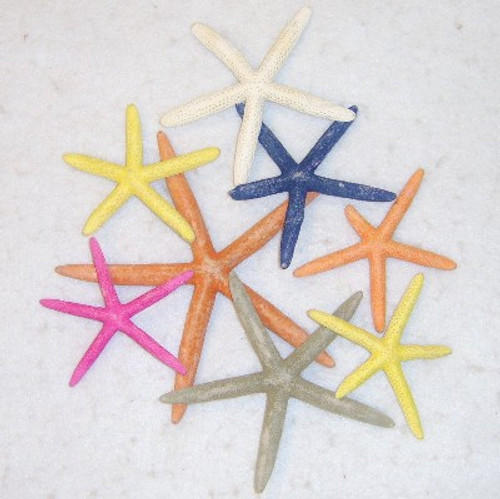 Finger Starfish Assortment #3579