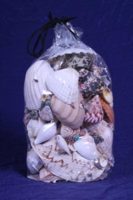 3# Bag Of Real Decorator Sea Shells #3844