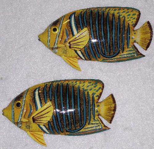 Tropical Fish Pair #3619