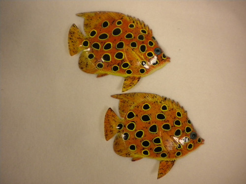 Tropical Fish Pair #3906