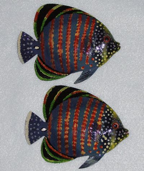 Tropical Fish Pair #3912