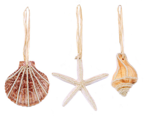 Sea Shell Ornaments  Nautical Seasons