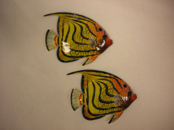 Tropical Fish Nautical Seasons