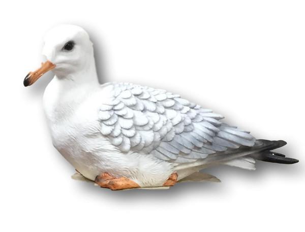 Sea Gull Decoration  Nautical Seasons