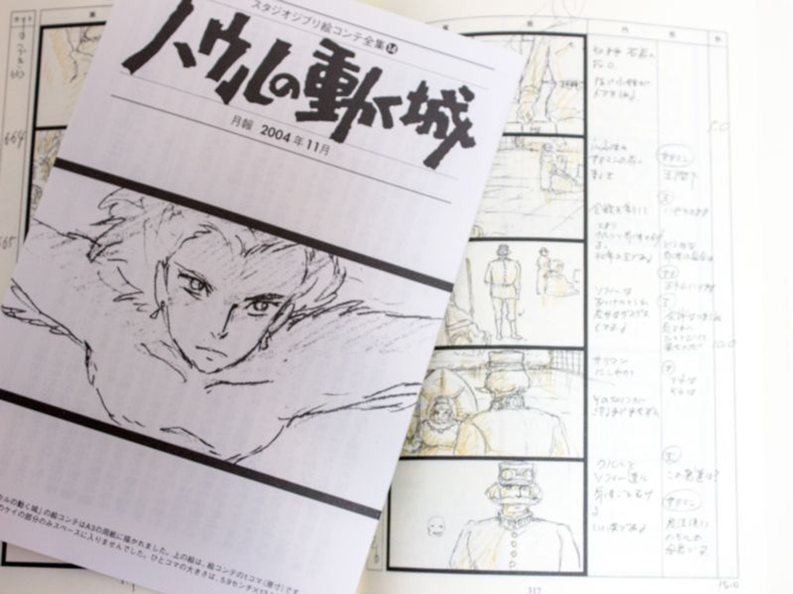 Howl/'s Moving Castle The storyboard complete works #14 book