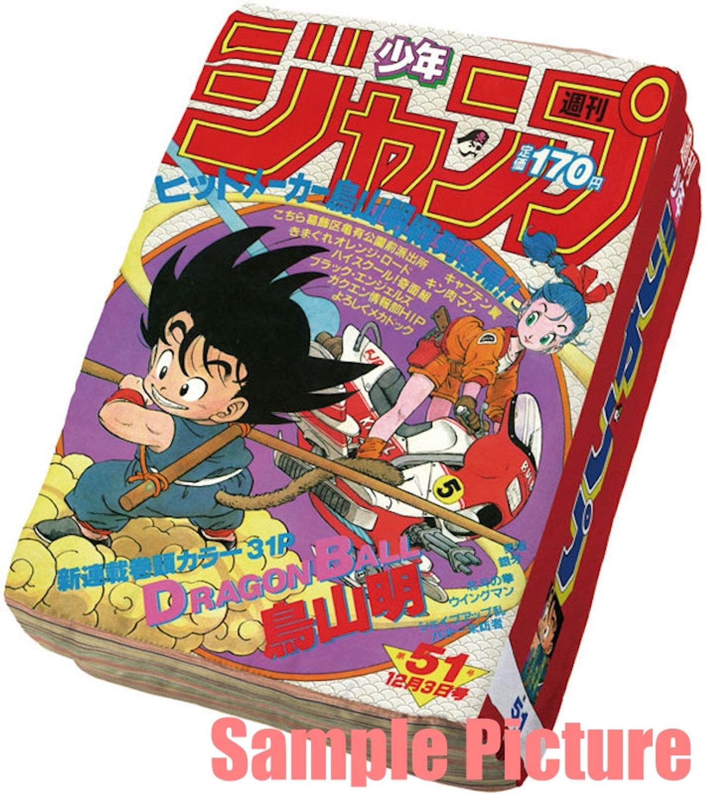 Dragon Ball Gokou Weekly Shonen Jump Style Pillow Cushion 15x10 inch JAPAN ANIME