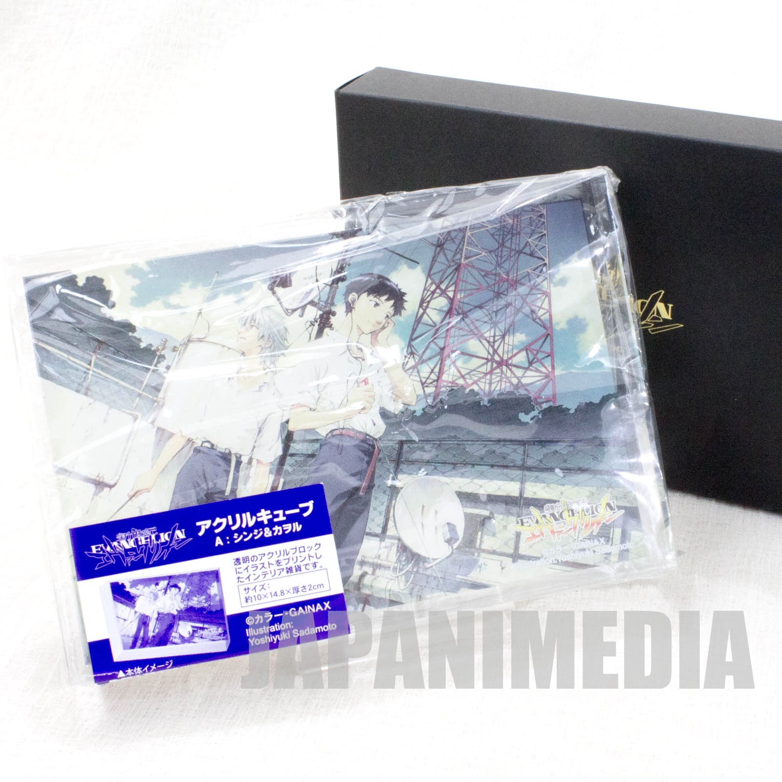 Evangelion Shinji & Kaworu Illustration Acrylic cube JAPAN ANIME