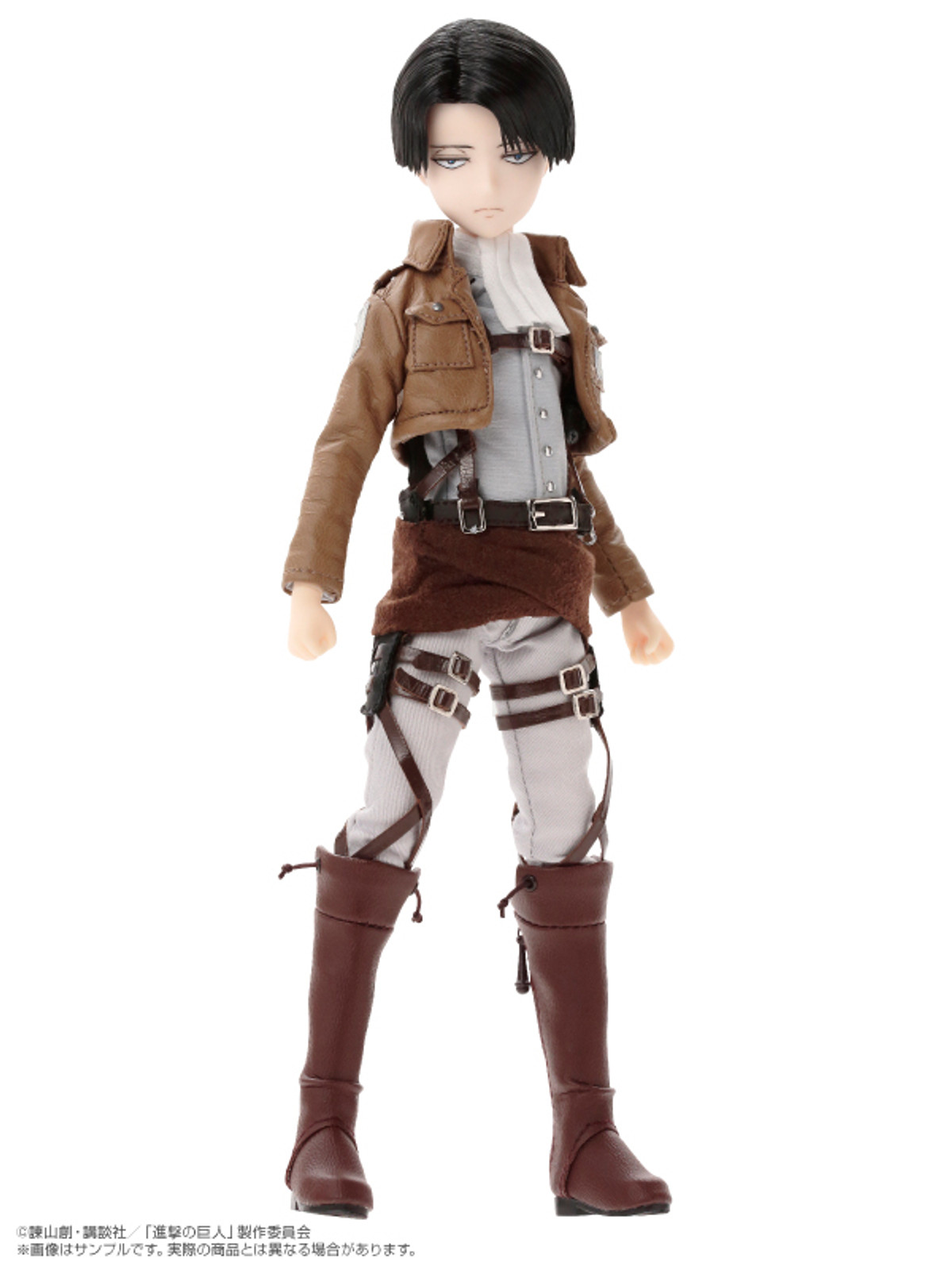 Attack on Titan Levi 1/6 Scale Doll Asterisk Collection Azone JAPAN ANIME FIGURE