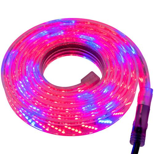 LED 5 Row Strip Grow Light - 120 Volt - High Output (SMD-2835) - Custom Cut