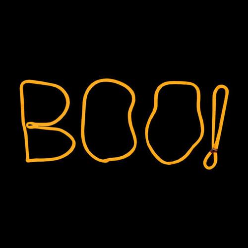 17 Inch Orange LED Neon Halloween BOO Motif