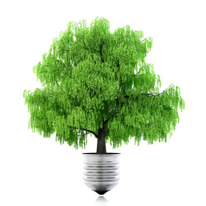 Green Lighting- You've been Given the Green Light