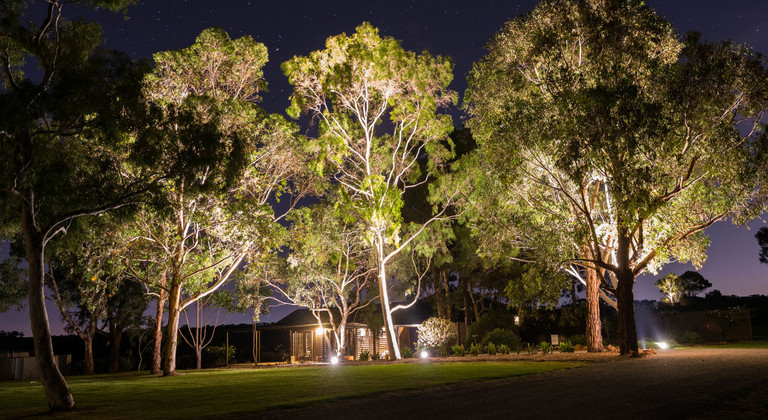 Landscaping Lighting Tips: 6 Ways to Increase Your Evening Curb Appeal