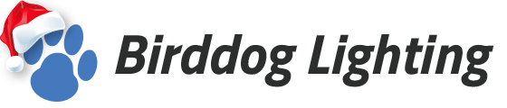 Birddog Lighting