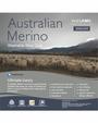 In 2 Linen Double Bed Australian Merino Wool  Quilt 300GSM | All seasons