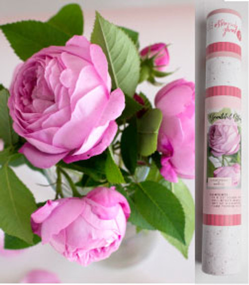 Paint by Numbers Kit - Beautiful Blooms