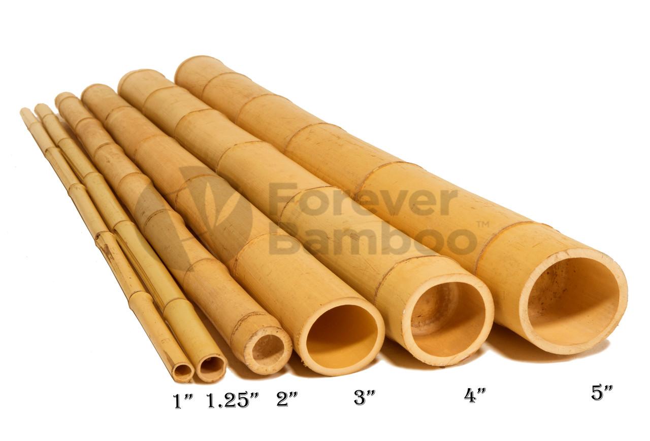 200 Natural Bamboo Poles 20