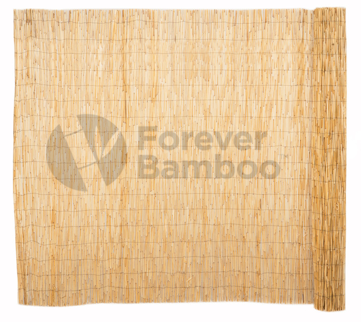 Peeled Reed Natural Fencing - 6ft. H x 16 ft. L (4 Pack)