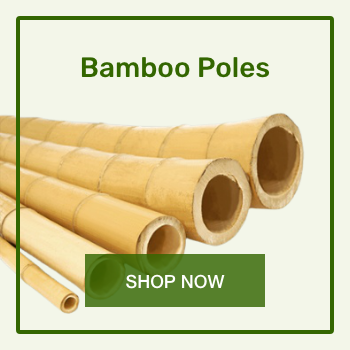 01-bamboo-poles-350x350.png