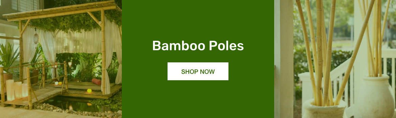 01-bamboo-poles-long.png