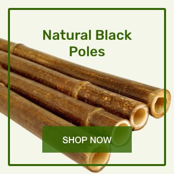 03-natural-black-poles-350x350.png