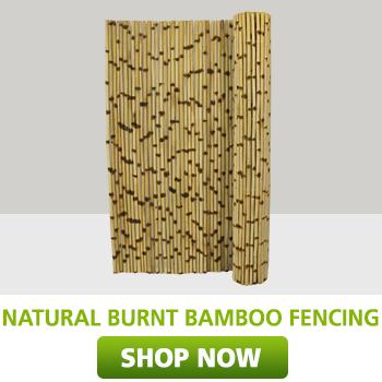 Natural burnt bamboo fencing