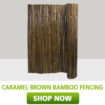 Caramel brown bamboo fencing