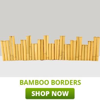 bamboo-borders-category-thumb.jpg