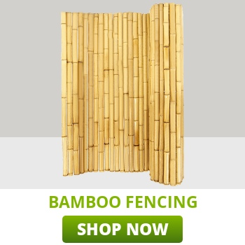 bamboo-fencing-category-thumb.jpg
