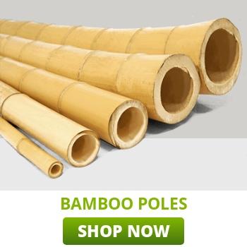 bamboo-poles-category-thumb.jpg