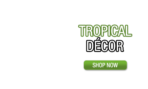 tropical-decor-category-home.png