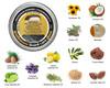 Beauty and the Bees Professor Edward J. Fuzzworthy's Beard Care Gloss - 40ml