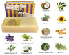 Beauty and the Bees Bonza Pet Shampoo All Natural