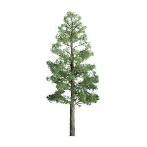 JTT Scenery Products 94290 Pine 1.5'' Pro 6 pack