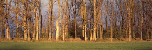 """Images Of The Land® ShelfScapes #2217x Picketts Charge Battle of Gettysburg 10"""" x 30"""" Backdrop"""
