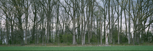 """Images Of The Land® ShelfScapes #2218x Picketts Charge Battle of Gettysburg 10"""" x 30"""" Backdrop"""