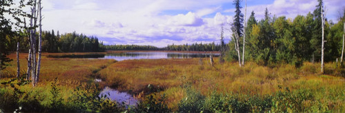"""ShelfScapes® AK100 Early Fall 10"""" x 30"""" Backdrop Images Of The Land Special Edition"""