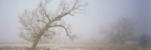"Images Of The Land® ShelfScapes #812 Foggy Winter Morn 10"" x 30"" Scenic Backdrop"