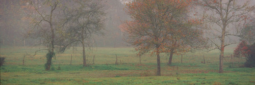 "Images Of The Land® ShelfScapes #1345MT Foggy Morning 10"" x 30"" Scenic Backdrop Mounted"