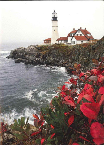 10 Original Photographic Art Note Cards With Envelopes Portland Head Light