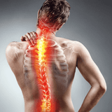 What Exactly Is Spinal Fitness and What Role Does It Play With Back Pain?