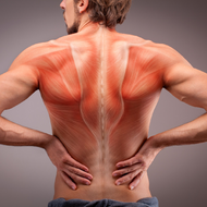 Top 5 Back Pain Solutions
