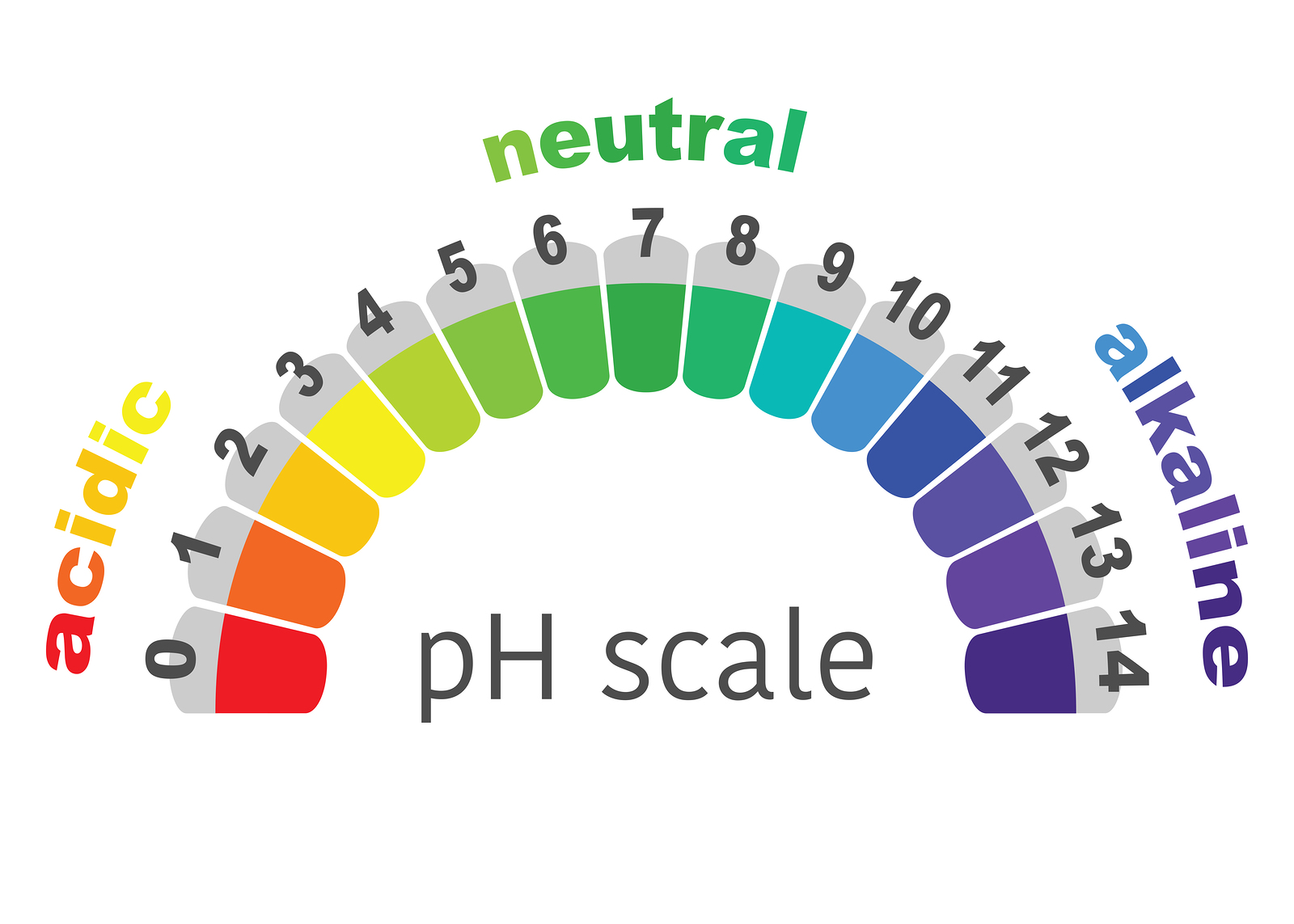 Acid, neutral and alkaline pH scale