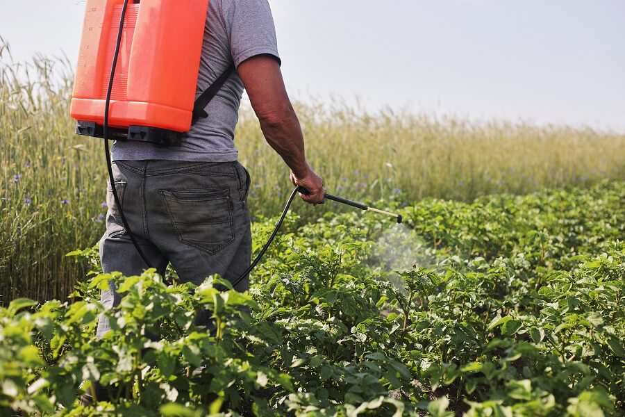 Farmer Misting Plants