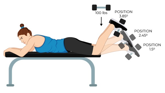 Illustrative Example the Leg Curl Exercise