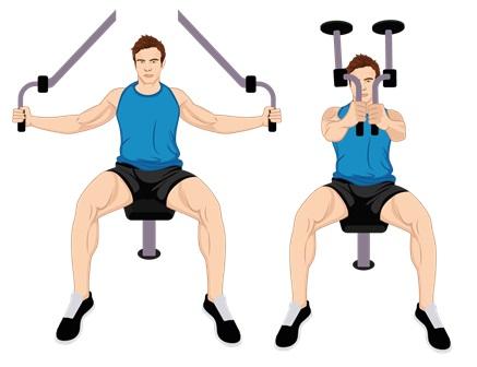Illustrative Example the Pec Deck Exercise