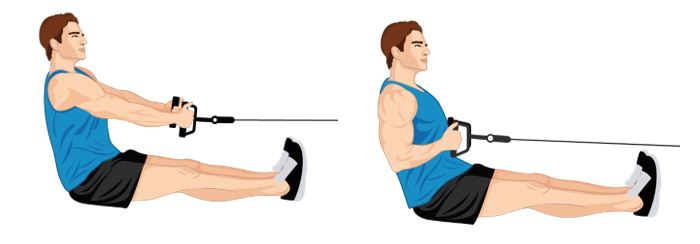 Illustrative Example of the Seated Row Exercise