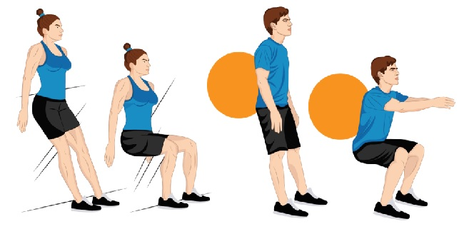 Illustrative Example of the Squat Exercise